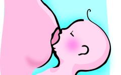 Mastite, cos´è e come si cura la mastite
